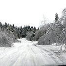 Ice Storm 2013 - Narrowed Road Ahead by Martha Medford