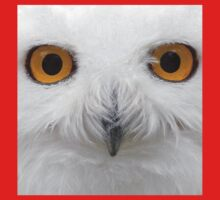 Snowy Eyes - Snowy Owl Kids Clothes