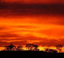Simpson sunset by digitalman
