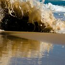 Splash!! by Naomi Frost