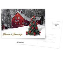 Christmas Card  Postcards