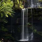 Russell Falls in Light by Barbara Burkhardt