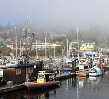 Gibsons Harbour by Carl Olsen