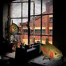 dream studio by Paul  Milburn