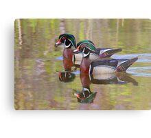 Twin Beaks - Wood Ducks Metal Print