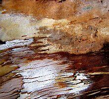 Patchwork Bark by Kathie Nichols