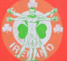 Ireland Cork Street art Dream Vincent Zara davinci  Sticker