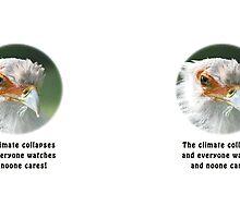 Upset Secretary Bird by Thomas F. Gehrke