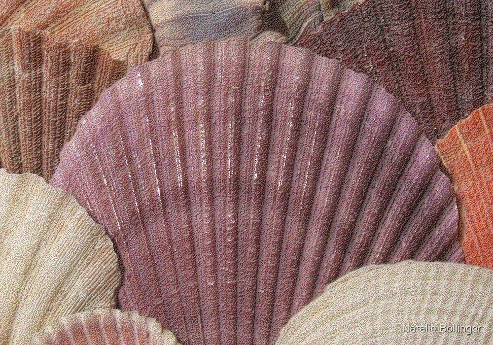 Sea Shells Card  by MidnightAkita