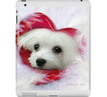 Snowdrop the Maltese - Forever in my Heart iPad Case/Skin