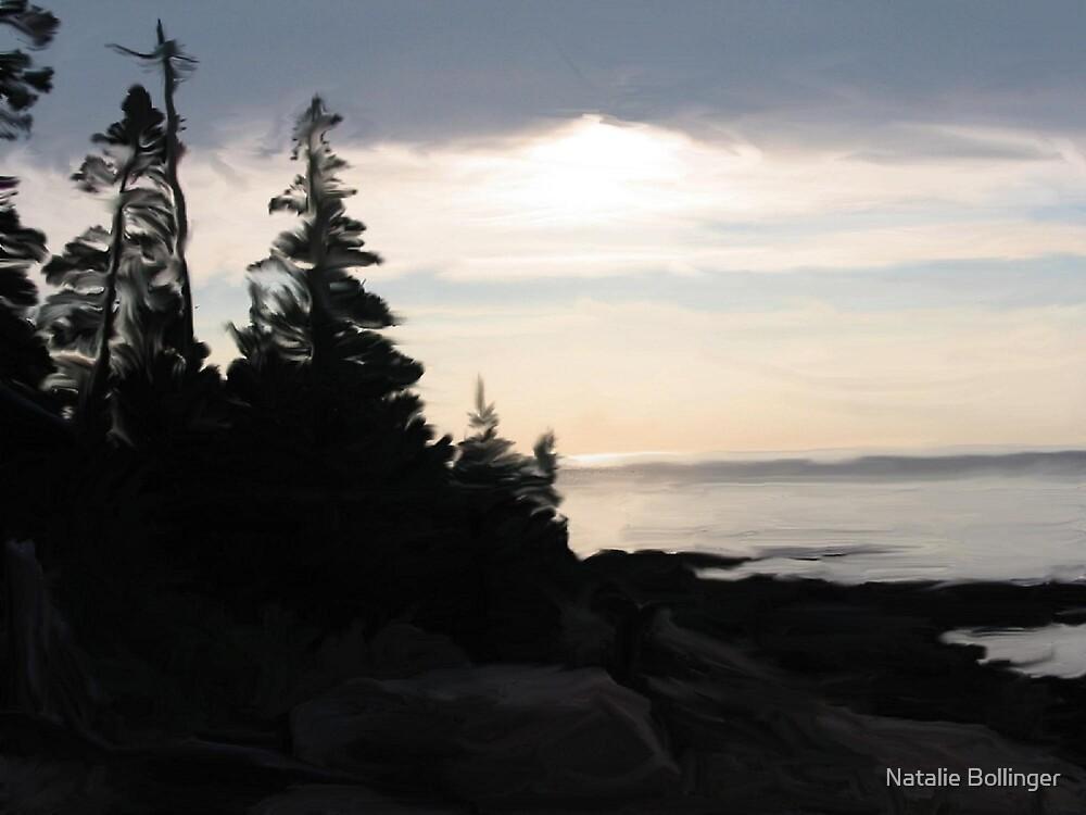 Acadia Coast Card by MidnightAkita