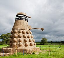Dalek made from Straw by Ian Middleton