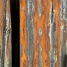 Abstract Rust by Dave Pearson