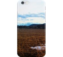 Spent Corn Fields iPhone Case/Skin