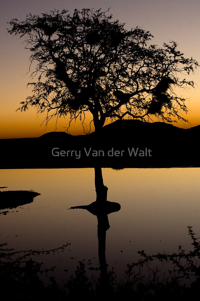 African Sunset by Gerry Van der Walt