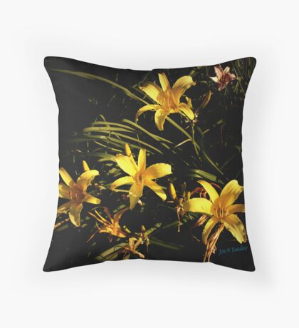 A Sunlit Patch Throw Pillow