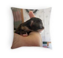 iddy biddy baby Throw Pillow