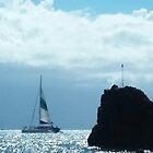 Sailing Past  Black  Rock  by WhiteDove Studio kj gordon
