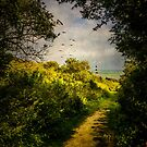On The Path To The Sea by Chris Lord