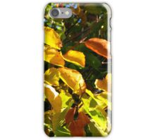 Sunlit Leaves of Russet and Green iPhone Case/Skin