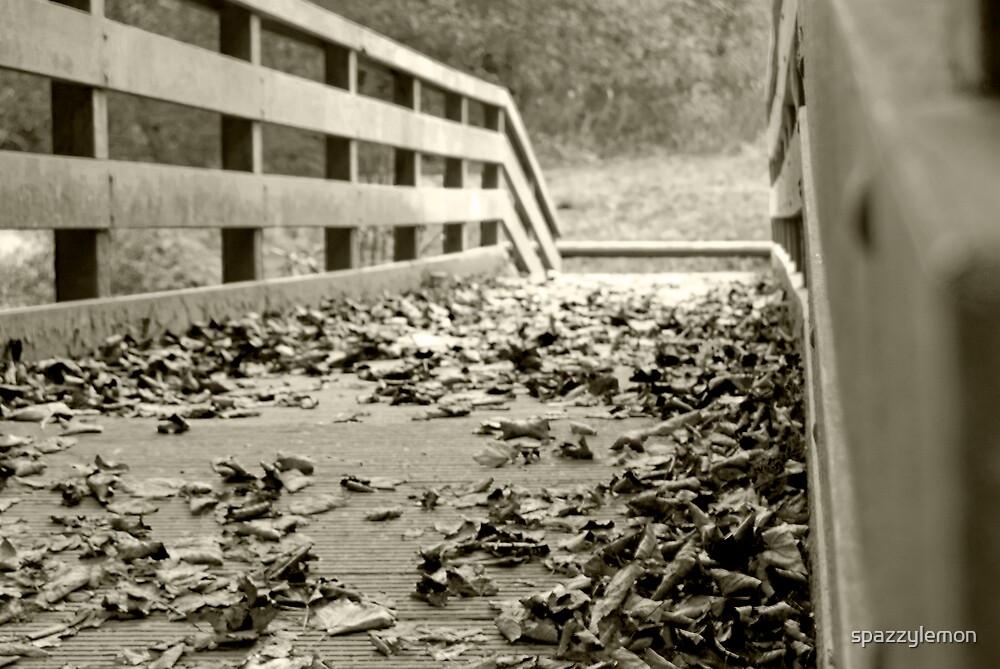 Leaf via the Bridge by spazzylemon