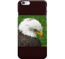 The American Bald Eagle iPhone Case/Skin