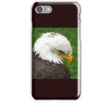 The American Bald Eagle iPhone Case/Skin