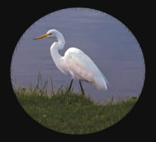 Great Egret Strolling in the Morning Sun T-Shirt by Delores Knowles