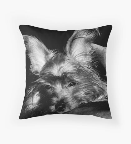 B&W Dog Portrait Throw Pillow