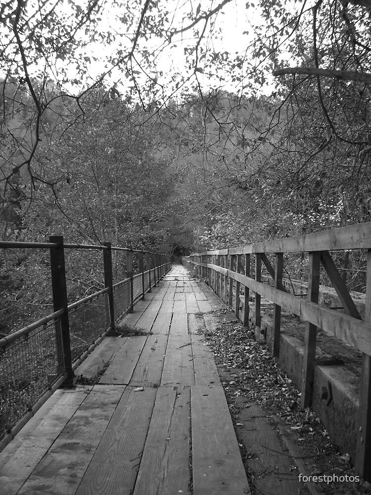 The Black Bridge by forestphotos