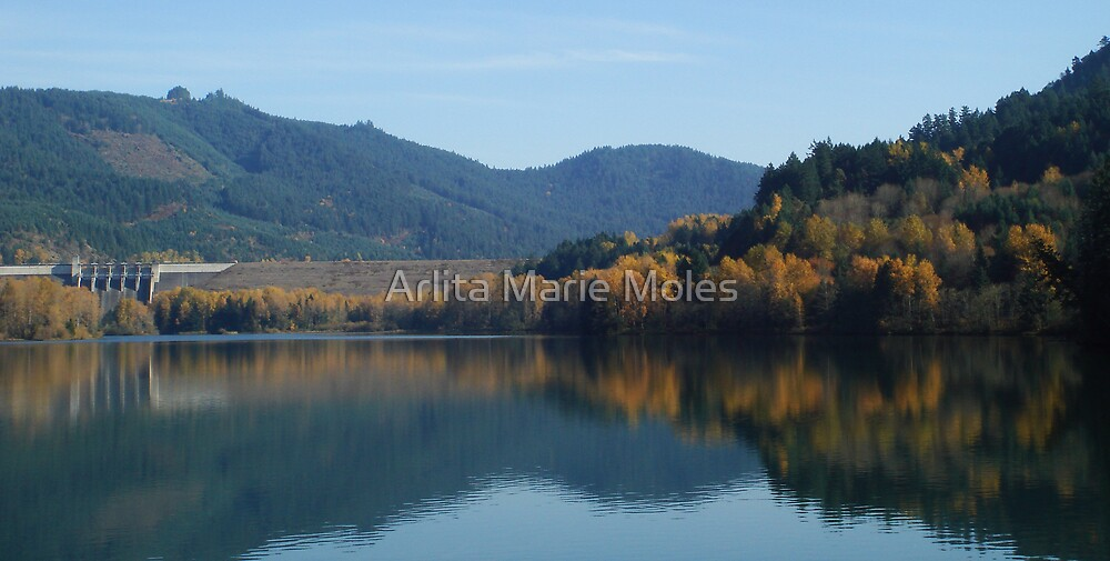 Autum at Lowell Oregon  by Arlita Marie Moles