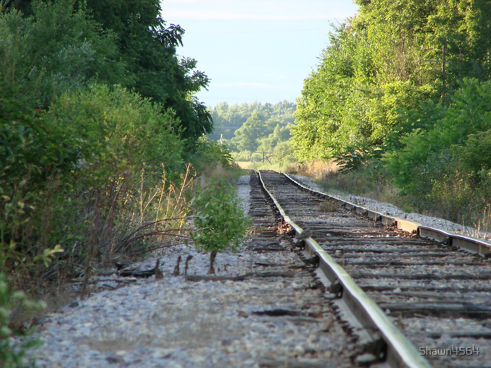Tracks With No Train by Shawn4564