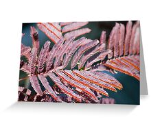 Sensitive Leaves  Greeting Card