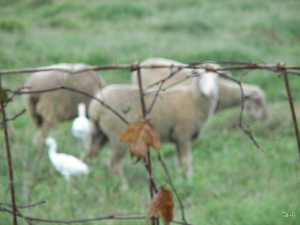 Sheep! by fuki