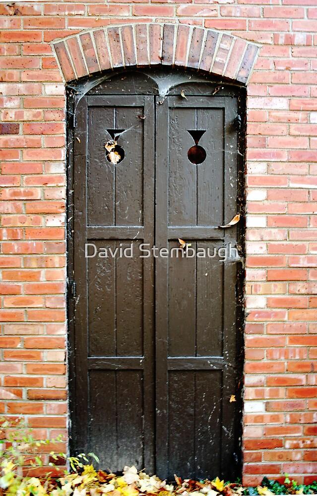 The Door by David Stembaugh