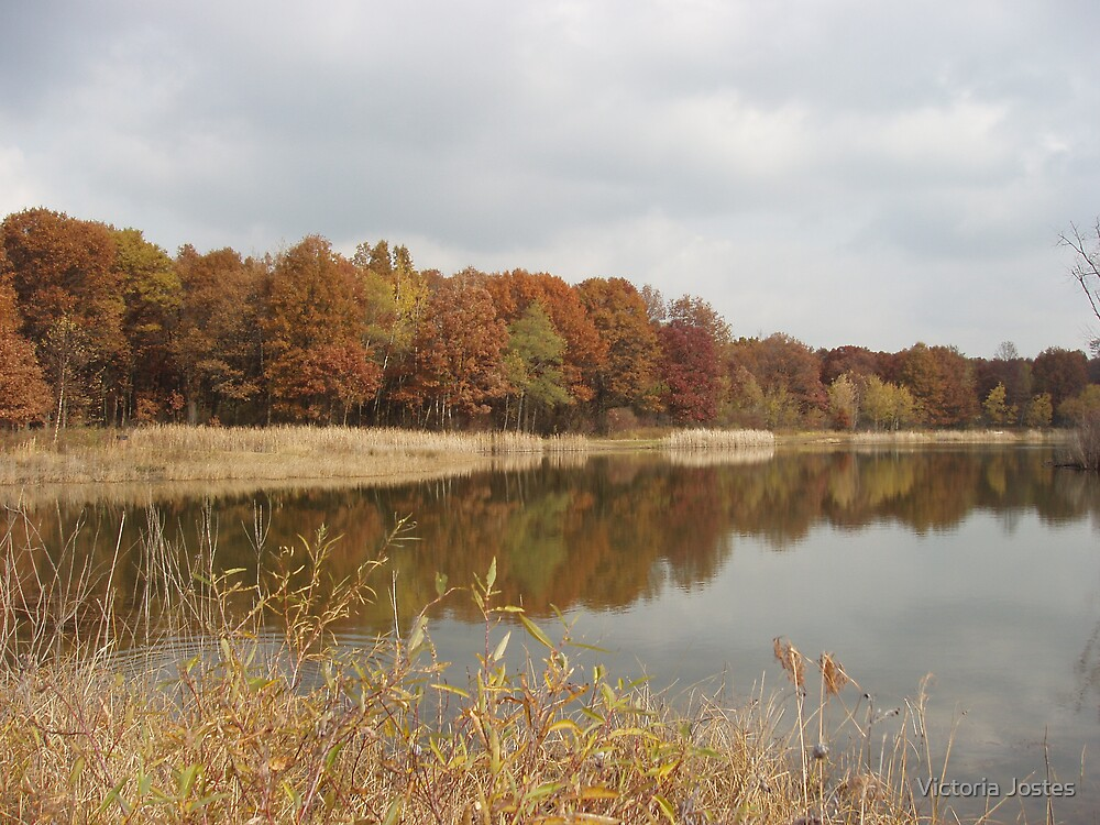 Autumn on the Pond by Victoria Jostes