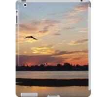 Flight through sheer pink and blue  iPad Case/Skin