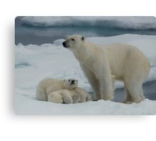 Hey Mum! Canvas Print