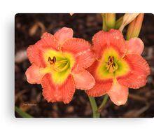 Fleurs orange Canvas Print