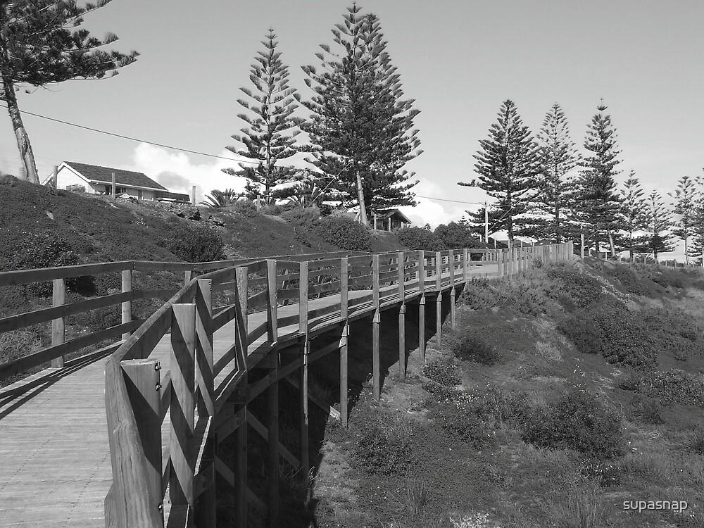 Boardwalk by supasnap