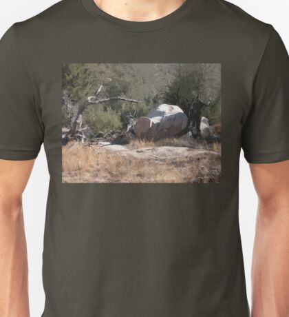 Southwest Branch and Rock No. 1 Unisex T-Shirt