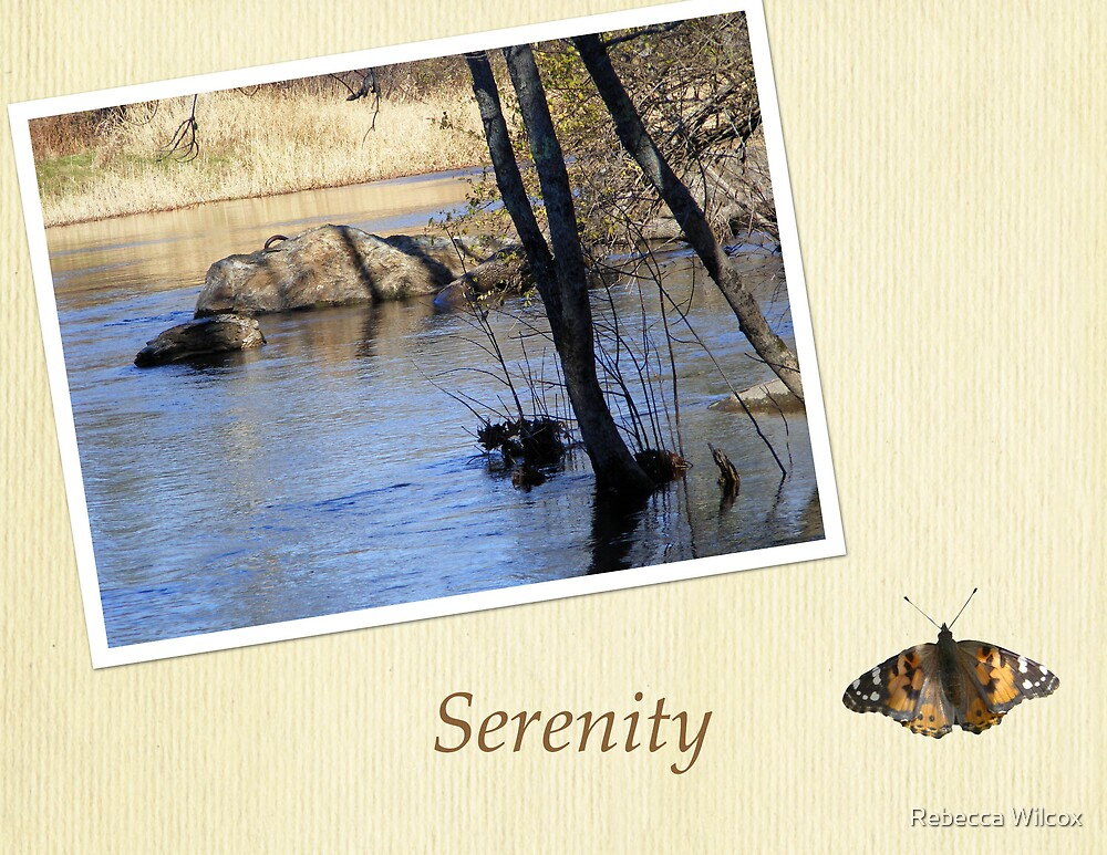 Serenity by Rebecca Brann