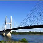 Bill Emerson Bridge by LauraElizabeth