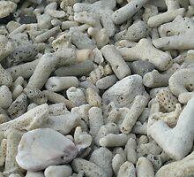 Coral Beach by satu kirk