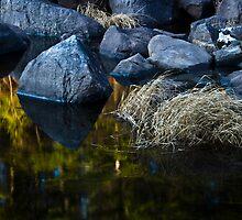 November on the Rocks by BrigitteC