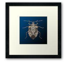 The Wonderful Dazzling Stink Bug Framed Print