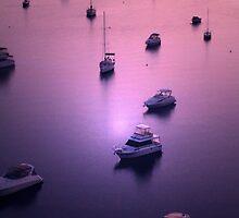 Purple Sailing by Bilks