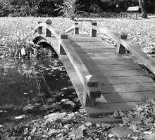 bridge by aepowell