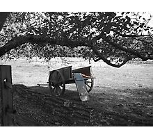 Wagon of red delicious apples Photographic Print