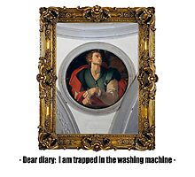 Dear diary: I am trapped in the washing machine Photographic Print